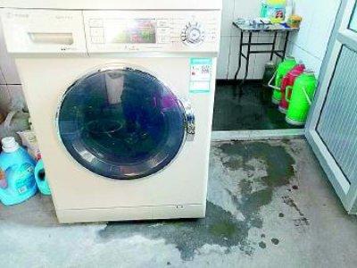 蔡甸区洗衣机维修服务部