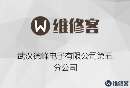 武汉德峰电子有限公司第五分公司